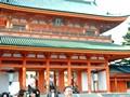 京都 花見 平安神宮