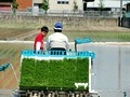 田植え 体験 トラクター