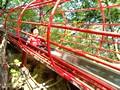 滋賀県 希望が丘公園