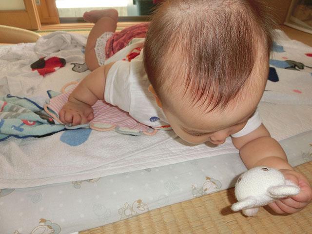生後6ヵ月 おもちゃ遊び