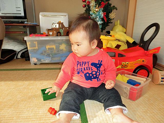 生後11ヵ月 木のおもちゃ