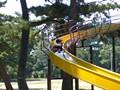 浜寺公園 写真
