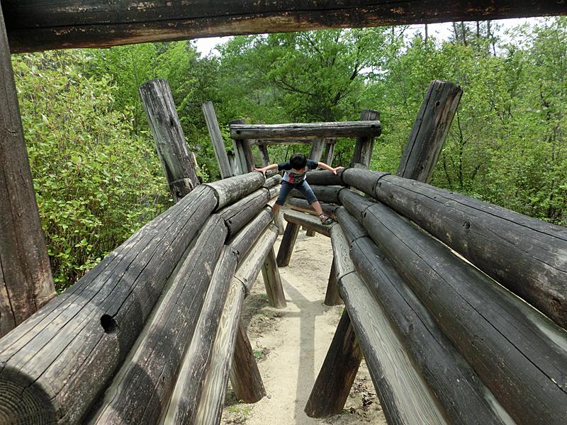 希望が丘文化公園 フィールドアスレチック