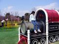 久宝寺緑地公園