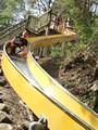 京都府立山城総合運動公園(太陽が丘) ローラー滑り台