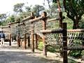 京都府立山城総合運動公園(太陽が丘) アスレチック