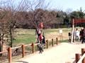 京都府立山城総合運動公園(太陽が丘) 芝生広場