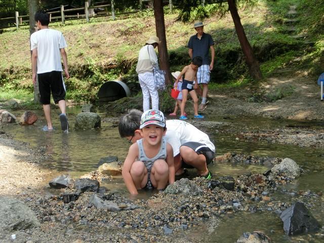 山城森林公園 川遊び 水遊び バーベキュー