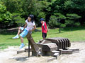 京都府立 山城総合運動公園 カブトムシ遊具