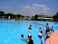 浜寺公園プール 写真