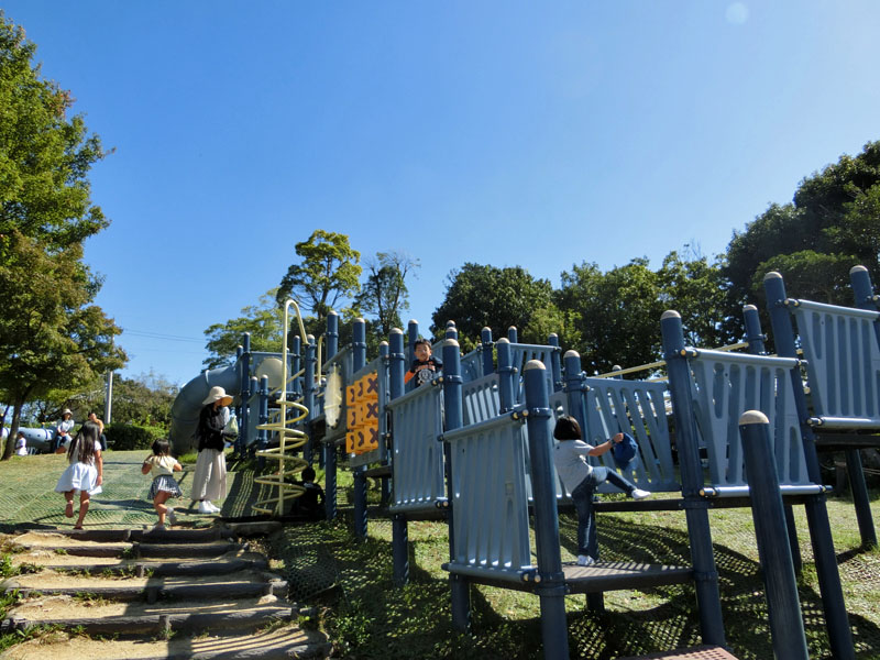 竹取公園 冒険の森 遊具