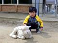 大阪府民牧場 動物と触れ合い