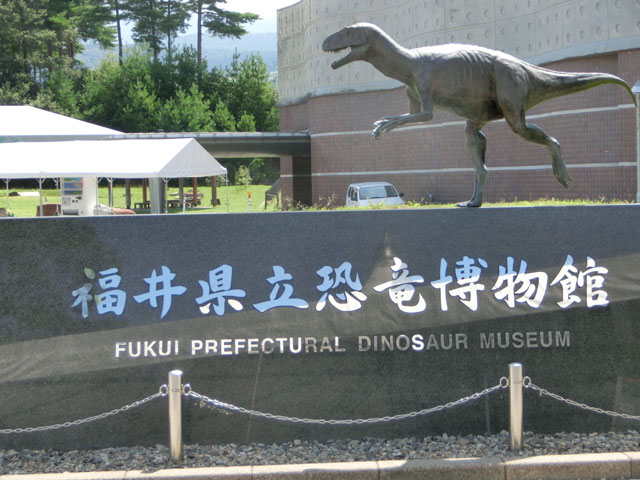 福井 恐竜博物館 混雑