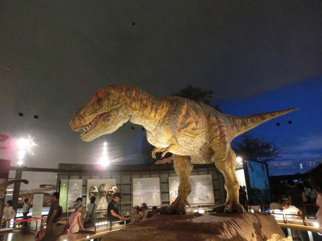 福井 恐竜博物館 料金