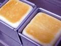 簡単食パン 冷蔵庫発酵