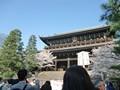 京都 花見 祇園四条駅 円山公園 八坂神社 知恩院