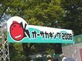 オーサカキング2008(オーサカキンギョ)