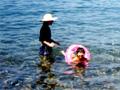 海水浴(越前海岸)