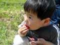 イチゴ狩り&京阪名記念公園