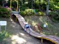 枚岡公園 ロープ