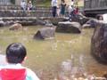 生駒山麓公園 せせらぎ広場
