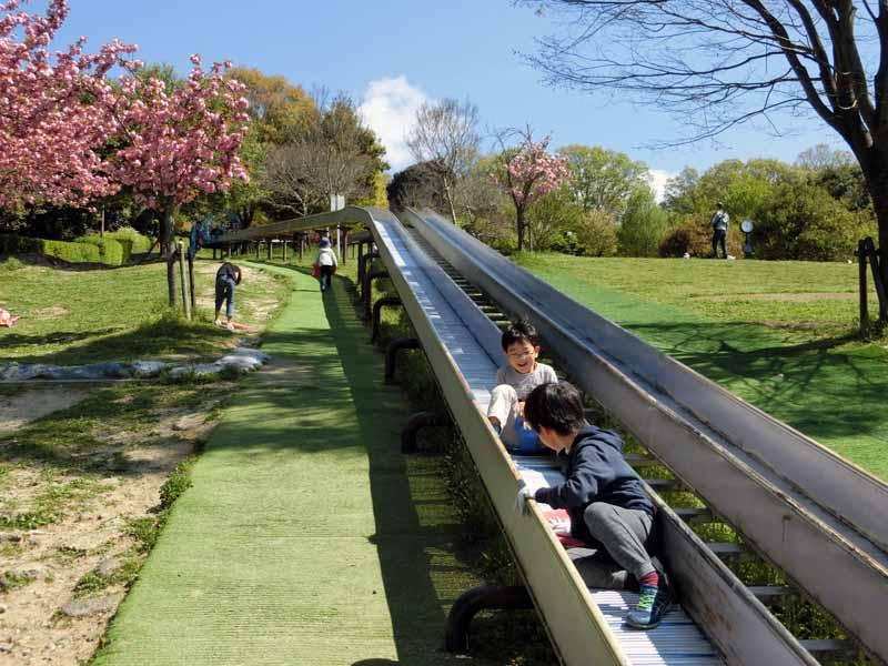 鴻巣山運動公園(城陽市総合運動公園) ロングローラースライダー
