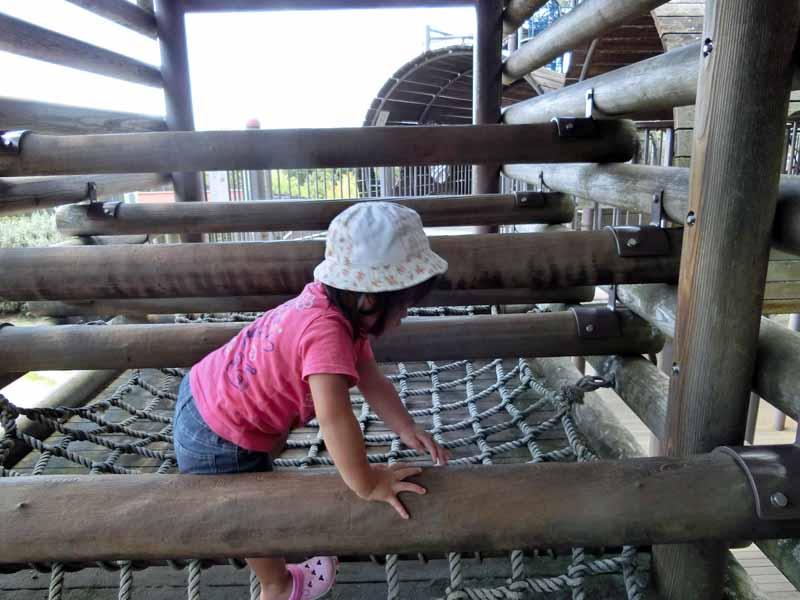 鴻ノ巣山公園(城陽市総合運動公園) アスレチック遊具