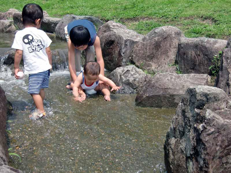 こうのすやま山公園(城陽市総合運動公園) 水遊び 渓流 川遊び