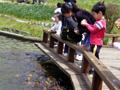 六甲山カンツリーハウス 池