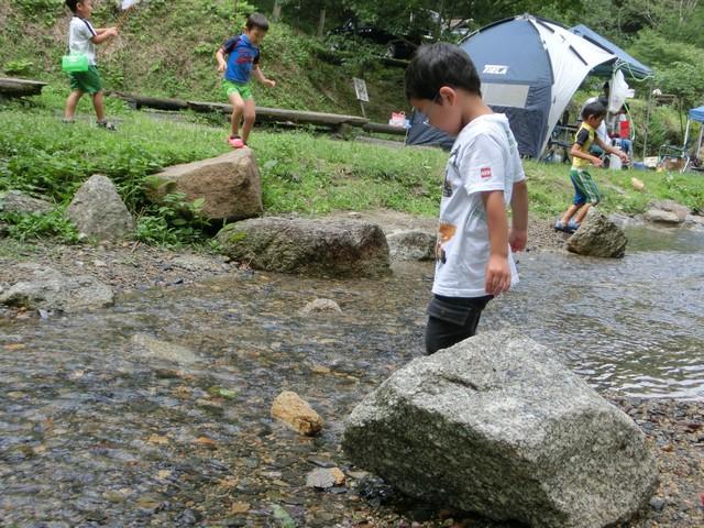 山城森林公園 川遊び 水遊び 沢蟹