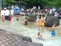 西猪名公園 水遊び場