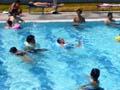 扇町公園プール 泳ぐ写真