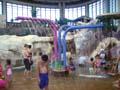 鶴見緑地プール シャワー