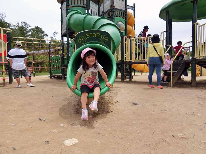 丹波自然公園 大型遊具