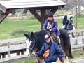 滋賀農業公園ブルーメの丘 乗馬体験