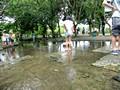 梅小路公園 川で水遊び