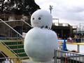 ひらパー(アイススケート・雪遊び)