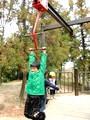 矢橋帰帆島公園に行ってきました!