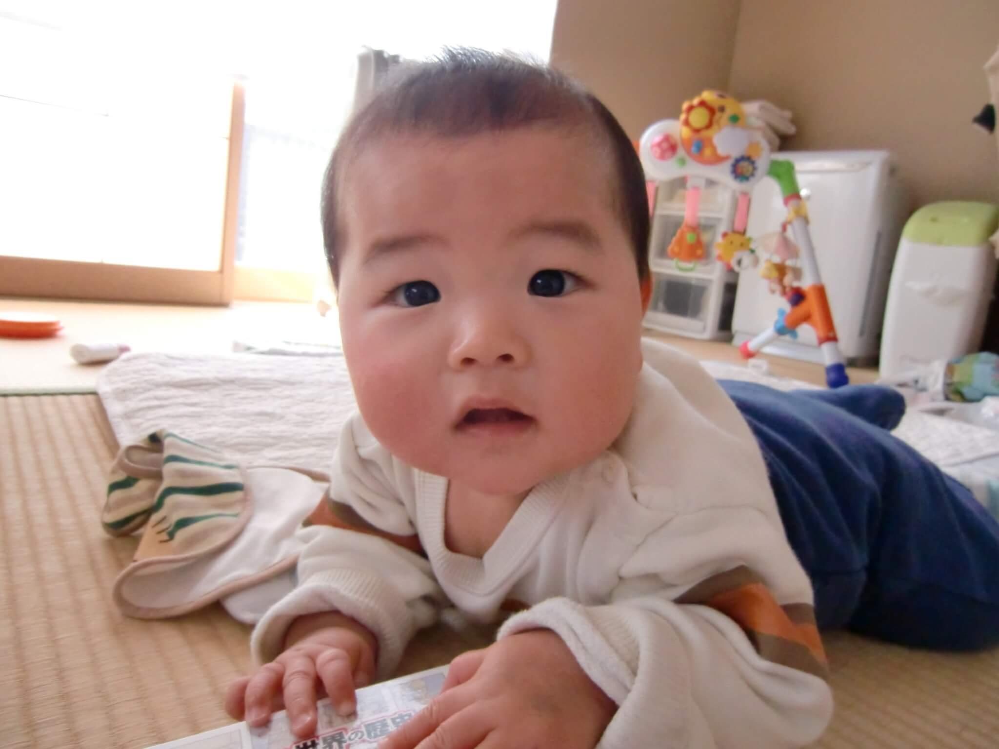 生後7ヶ月:7ヶ月目の成長記録