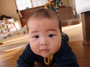 生後8ヶ月:8ヶ月目の成長記録
