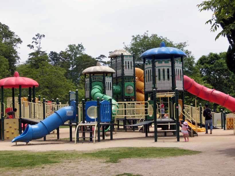 丹波自然運動公園アスレチック遊具とじゃぶじゃぶ池の水遊び